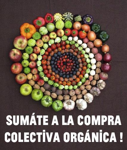 compra-organica